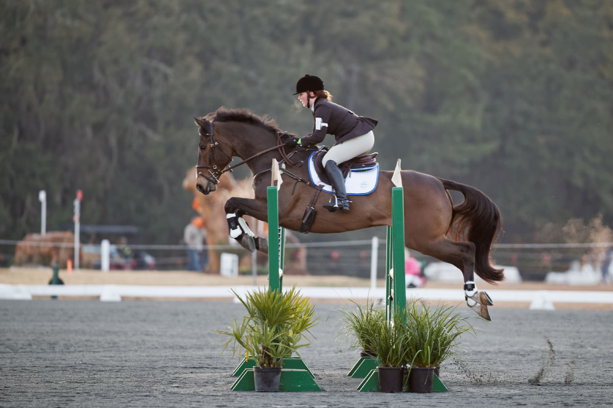 Red Hills International Horse Trials: Day 3 – Stadium ...